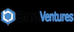 Brand Ventures Logo