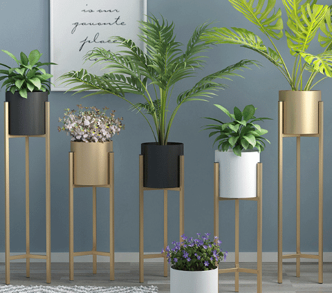 Collection of metal planters with a variety of plants