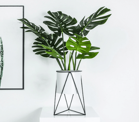 Green leafy plant in a white planter pot with a geometric metal frame.